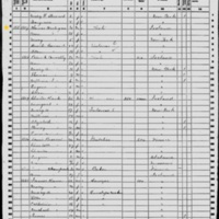Thomas O'Toole Hartigan; 1860 Census
