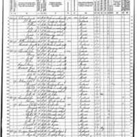 Thomas O'Toole Hartigan; 1870 Census