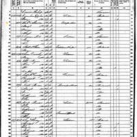 Margaret and Michael Sheridan; 1860 Census