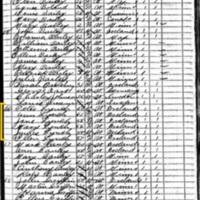 Ann, Jane, Ellen, Peter, and James Lynch; 1885 Census